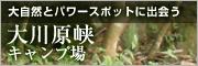 大自然とパワースポットに出会う 大川原峡キャンプ場