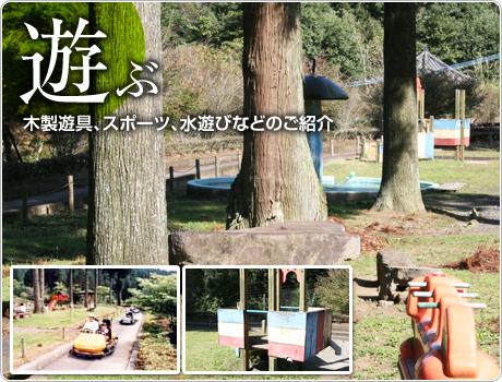 遊ぶ 木製遊具、スポーツ、水遊びなどのご紹介