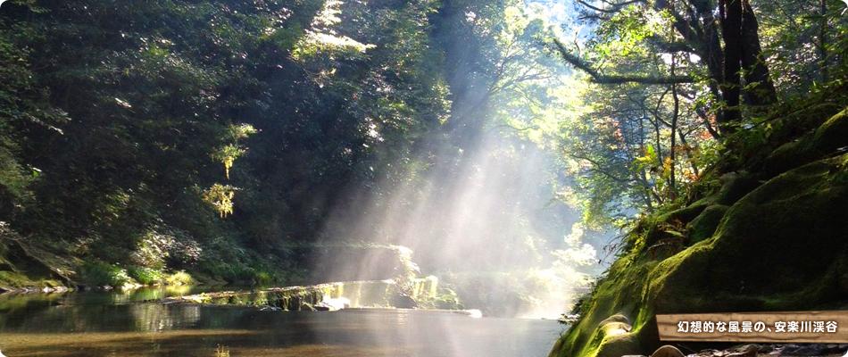 幻想的な風景の安楽川渓谷