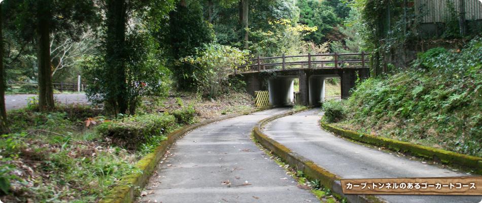 カーブ、トンネルのあるゴーカートコース
